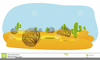 Tumbleweed And Cactus Clipart Image