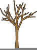 Trunk Of A Tree Clipart Image