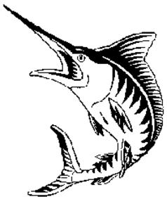 Marlin | Free Images at Clker.com - vector clip art online ...