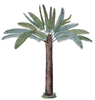 Palm Tree Cliparts Image