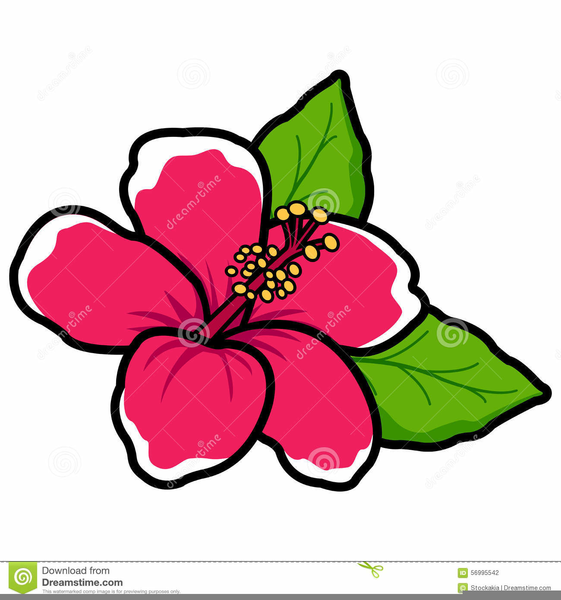 Hawaiian Hibiscus Flower Clipart Free Images At Clkercom Vector