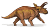 Anchiceratops Image