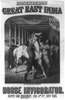 Rosenberg S Great East India Horse Invigorator Image