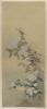Chrysanthemum Flowers Against Pine Boughs Image