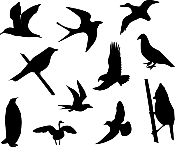Birds Silhouette Clip Art at Clker.com - vector clip art ...