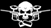 Paint Ball Skull Image