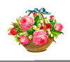 Free Clipart Pink Roses Image