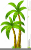 Clipart Palm Tree Image