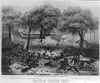 Battle At Carnifax Ferry Image