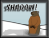 Groundhog Shadow Image