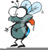 Free Clipart Housefly Image
