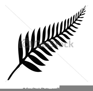 Silver Fern Clipart Image