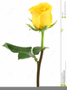 Long Stem Yellow Rose Clipart Image