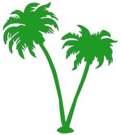 Palm tree green. Palmtree free images at