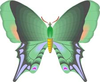 Vintage Butterfly Cartoon Green Image