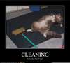 Funny Spring Cleaning Image