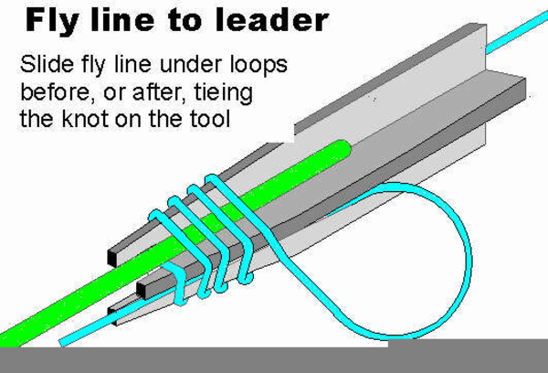 Leader fly line free images at vector clip for Fly fishing leader