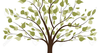 Tree Black And White Clipart Image