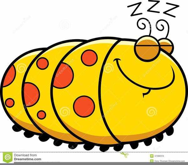 Cartoon Caterpillar Clipart Free Free Images At Clker Com