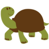 Turtle Brown Image