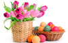 Pink Tulips In Basket Colorful Easter Eggs X Wide Wallpapers Net Image