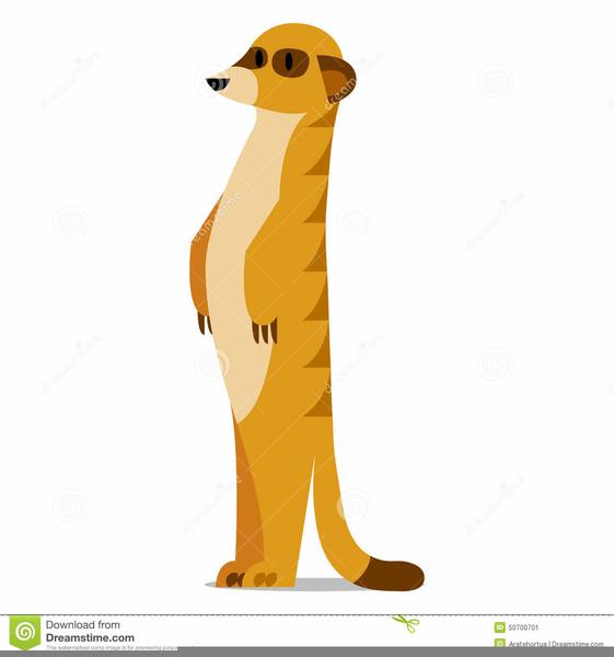 meerkat clipart free images at clker com vector clip art online rh clker com Meerkat Drawing Baby Meerkats