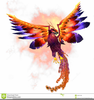 Phoenix Chinese Clipart Image