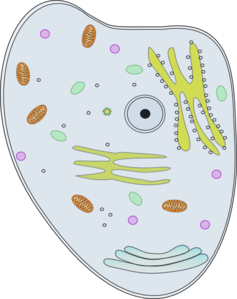 Happy Cell Clip Art