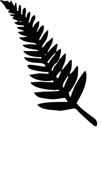 Clipart Fern Nz Silver Free Images At Clker Com Vector