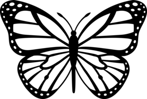Monarch Butterfly Black White Image