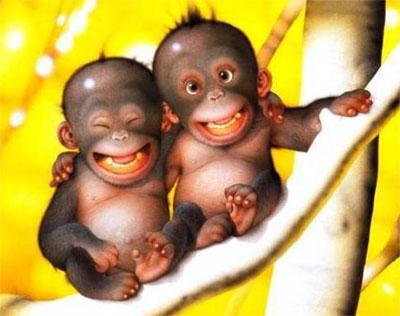 Funny Monkey – Funny Monkey Birthday Cards