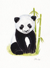 Watercolor Panda Bear Image