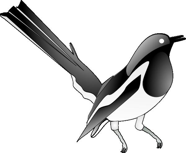 Oriental Magpie Robin Clip Art at Clkercom vector clip art