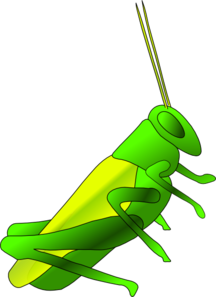 Cricket Clip Art