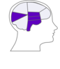 Head And Brain Outline3 Clip Art