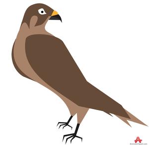 hawk clipart free images at clker com vector clip art online rh clker com hawk face clipart hawk clipart easy