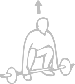 Weight Training Clip Art