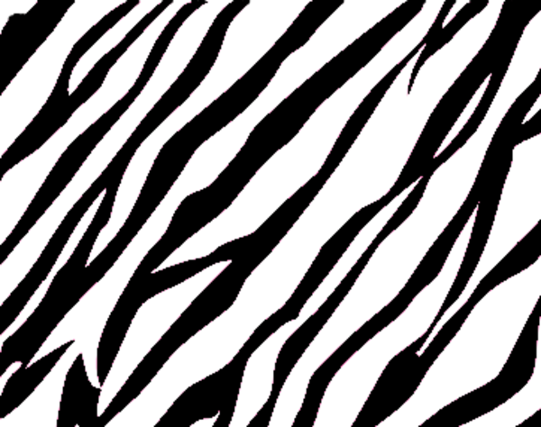 Zebra Stripe Border Cl...