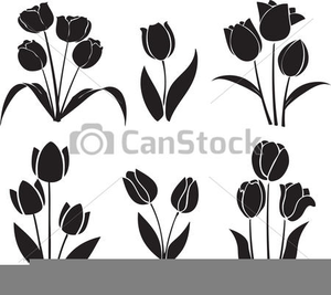 Drawing Of Tulips Clipart Image