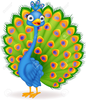 Peacock Clipart Image