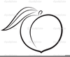 Black And White Fruit Clipart Image