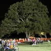Outdoor Night Activities Canton Tx East Texas Outdoor Night Activities Image