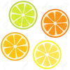 Orange And Grapefruit Clipart Image
