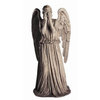 Weeping Angel Image