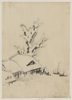 [buildings And Large Tree On The Waterfront, With Two Boats Anchored Offshore] Image