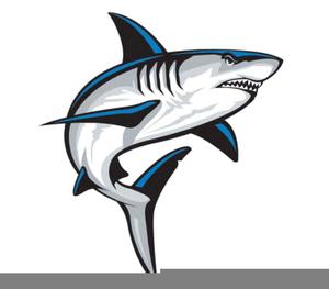 shark logos image