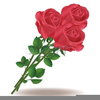 Clipart Free Pink Rose Image
