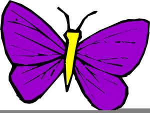 Butterfly Animated Clipart Image