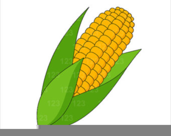 free indian corn clipart free images at clker com vector clip rh clker com indian corn clipart black and white Candy Corn Banner