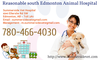 Reasonable South Edmonton Animal Hospital Image